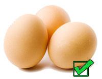 яйца на белковой диете разрешены