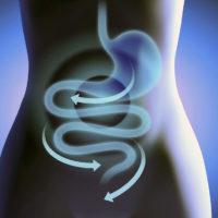 Как инулин действует на кишечник