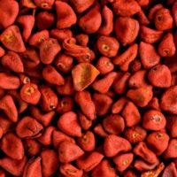 Семена annatto