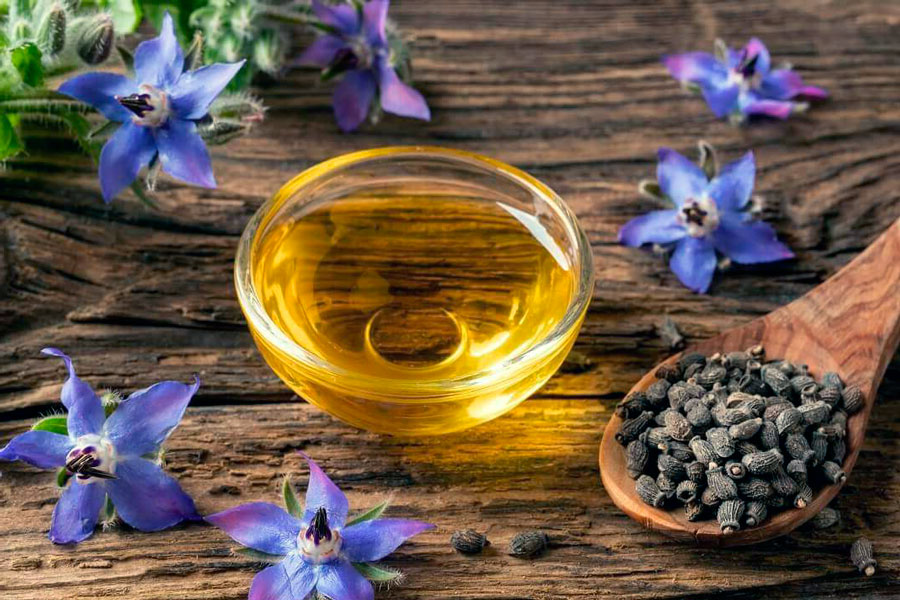 Как делают масло из огуречника