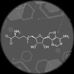 Миниатюра материала - Метионин