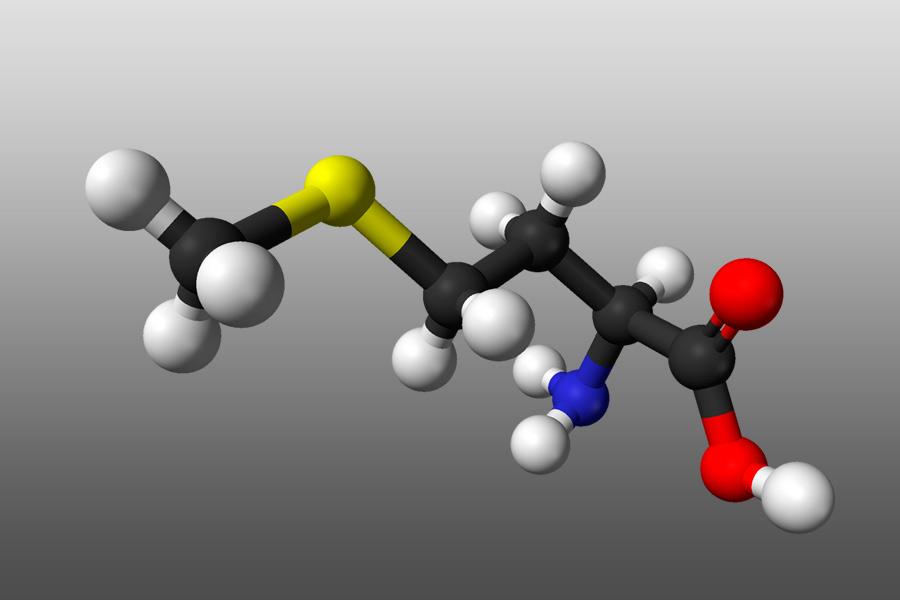 Метионин- 3д структура