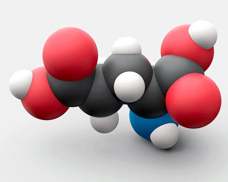 Глутаминовая кислота - аминокислота